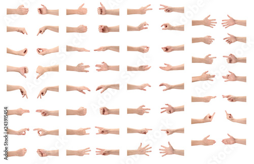 Fotografie, Obraz  Rich collection of various hand gestures, isolated on white background