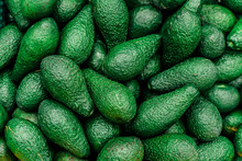 Fresh Avocado On The Market. Beautiful Juicy Avocado Fruits Lie On The Counter. Natural Green Background Of Avocado Fruit.