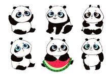 Cute Little Panda Bears In Var...