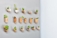 Fridge Magnets Garden