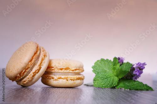 Photo  macaron,pâtisserie