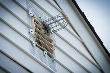 One Way Squirrel Exit Tunnel And Wire Mesh Installed To Eliminate Rodents In Attic.