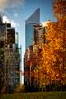 Manhattan Skyline in Autumn Colors