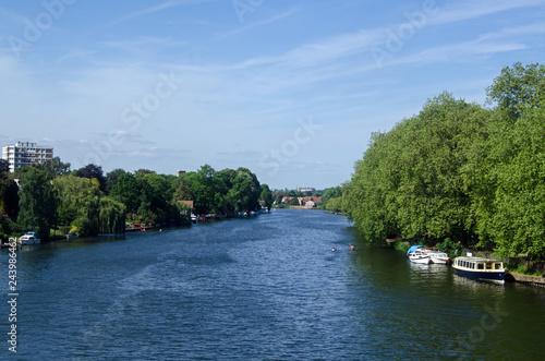 Fotografie, Obraz  River Thames at Kingston, South West London