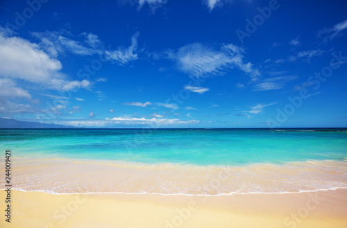 Hawaiian beach - 244009421