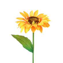 Artificial Sunflower Isolated ...