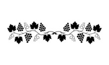 Vector Illustration. Black Outline (contour) Of Crossed Grape Branches With Leaves Isolated On White Background. Decorative Design Element For Wine Menu As Border For Text Divider And Page Decoration.