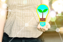 """Woman Holding A Light Bulb With A Plant Growing Inside As """"green Thinking"""" Concept  On A Sunny Day"""