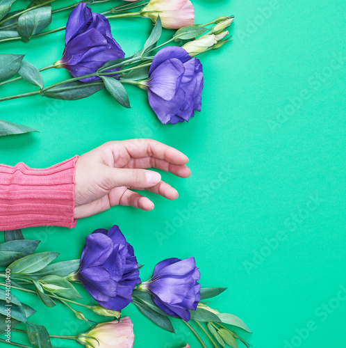 Fotografía  female hand in a bright pink sweater on a green background
