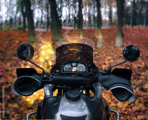 Fototapeta first-person view, driving a touristic motorcycle, steering wheel. autumn. in the forest with fallen leaves. moto tourism and recreation concept, evening obraz