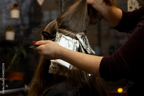 Hair stylist applying hair color on young brunette woman