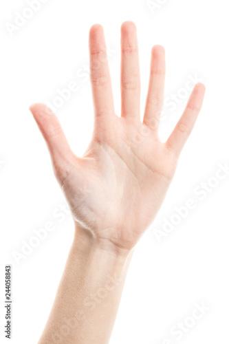 Female hand isolated on white background Fototapet