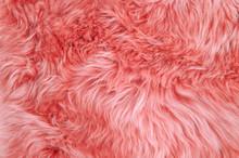 Coral Sheepskin Rug Background...