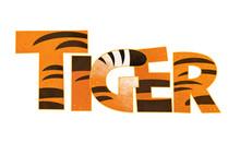Cartoon Scene With Tiger Sign On White Background - Illustration For Children