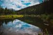 Mirrored Lake