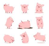 Fototapeta Fototapety na ścianę do pokoju dziecięcego - cute pink pig set
