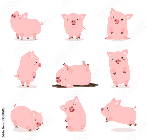 Fototapeta cute pink pig set