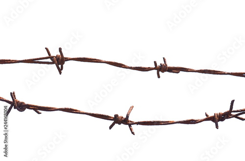 Fotografía  Barbed wire isolated on a white background