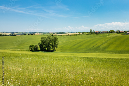 Cadres-photo bureau Pistache Landscape in the countryside of Toulouse, south of France