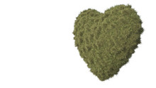 Grassy Heart. 3D Illustration....
