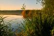 Sommermorgen im Vogelschutz- und Landschaftsschutzgebiet Sauerstücksee bei Grafenrheinfeld, Landkreis Schweinfurt, Unterfranken, Franken, Bayern, Deutschland.