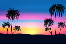 Sunset And Tropical Palm Trees...