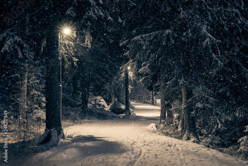 Spoed Foto op Canvas Weg in bos Moody landscape with snow path and light at winter evening in Finland