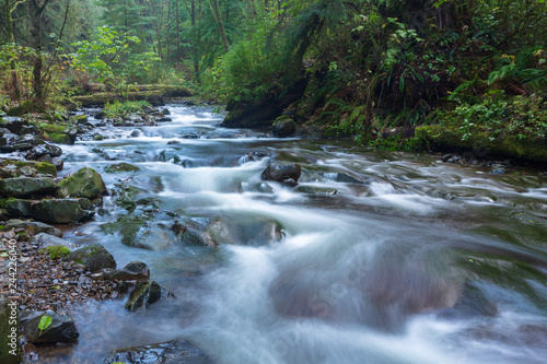 Foto auf Gartenposter Fluss Cascade And Stream In Forest