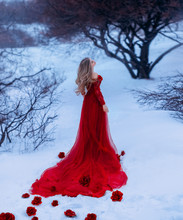 The Bloody Countess Batory. Girl Like Gorgeous Flower, Rosebuds Fall On White And Cold Snow, Lady With Blond Hair In Winter Forest In Long, Elegant, Red Dark Dress With Train With Bare Shoulders