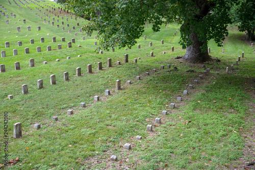 Fotografie, Obraz  Vicksburg National Military Park preserves the site of the American Civil War Ba