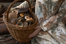 Young Woman With Long Red Hair In A Linen Dress Gathering Mushrooms In The Forest In The Bast Basket