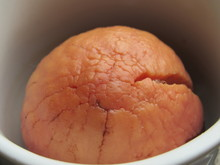 Avocado Fractal
