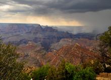 Rain Over Grand Canyon At Dese...