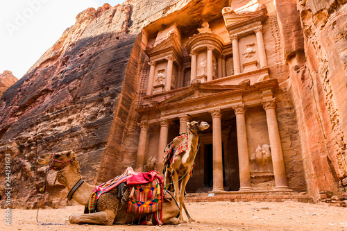 Fotografie, Obraz  Spectacular view of two beautiful camels in front of Al Khazneh (The Treasury) at Petra