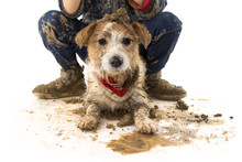 FUNNY DIRTY DOG AND CHILD. JAC...