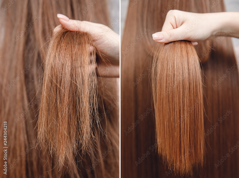 Fototapeta Sick, cut and healthy hair care keratin. Before and after treatment