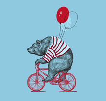 Bear Ride Bike Balloon Vector ...