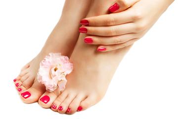 Czerwony manicure i pedicure z kwiatu zakończeniem up, odizolowywający na białym tle