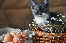 Cute Grey Little Kitten In A Wicker Basket And Easter Eggs Of Natural Red Color With A Graphic Pattern Of White Paint In A Cardboard Tray On A Retro Burlap Background.