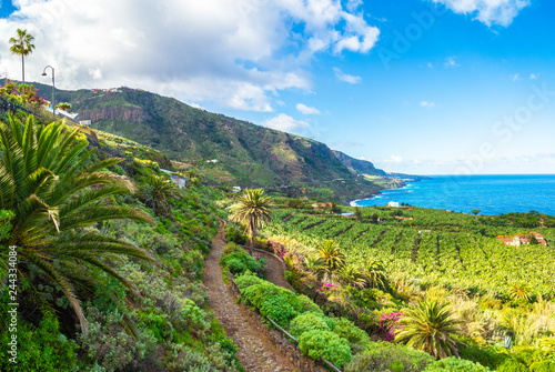 Wall Murals Northern Europe Landscape with North Tenerife coast, Canary island, Spain