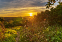 A Bench In The Sunset, Seen In...