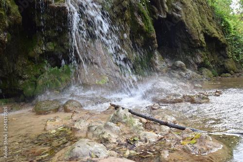 Fototapeten Forest river National park Krka in Croatia