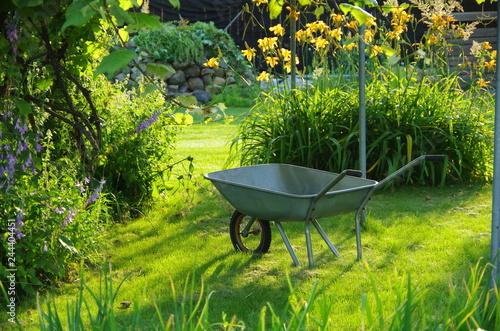 Fényképezés On a Sunny day, a garden wheelbarrow stands on a green lawn in the garden