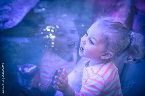 Surprised excited beautiful child girl looking with admiration through aquarium Canvas Print