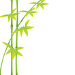 Green bamboo stalks and leaves on a white background with copy space. Vector illustration.