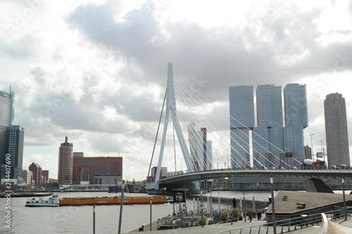 Foto auf AluDibond Rotterdam erasmus bridge, rotterdam