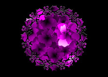 Laser Cut Border Mandala Of Purple Flowers, Pink Floral Pattern With Blooming Hibiscus Flowers, Botanical Print Vintage Textile Collection Background. Floral Perfume Concept. Black Fashion Template