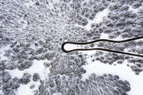 Fototapeta Aerial view of a beautiful serpentine road surrounded by a forest of pine trees and white snow
