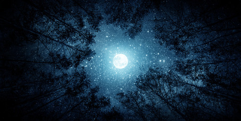 Prekrasno noćno nebo, Mliječni put, mjesec i drveće. Elementi ove slike koju je namjestila NASA.