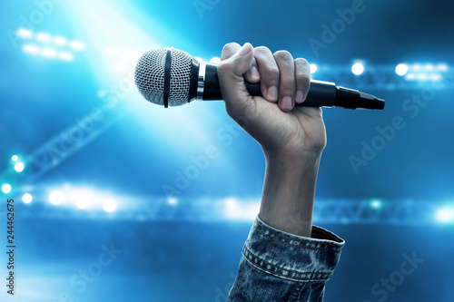 Hand holding microphone - 244462675